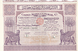Cairo Agricultural Company